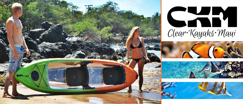 Clear Kayaks Maui Maui S Only Clear Bottom Kayak Experience